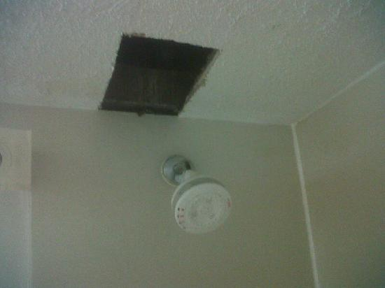 Quality Inn & Suites: Hole above Shower