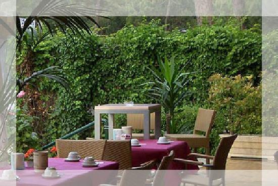 Hotel Consul : Colazione in veranda