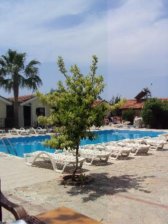 Leda Beach Hotel: view of the pool