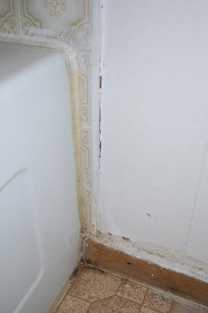 Parkland Motel and Guesthouse: Mould and deteriorating caulking.