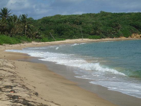 Hyatt Hacienda Del Mar: the other side of the beach :)