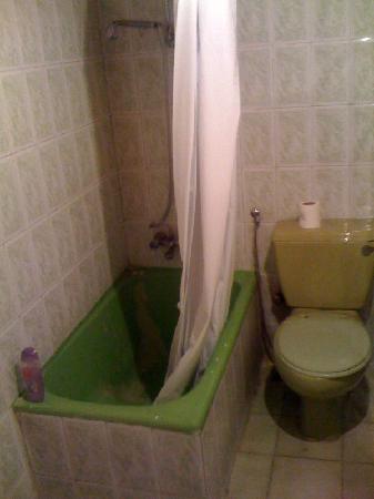 Indiana Hotel: avocado green bathroom
