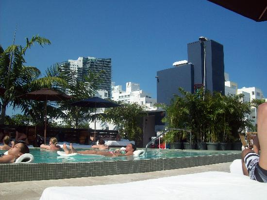 rooftop pool picture of catalina hotel beach club. Black Bedroom Furniture Sets. Home Design Ideas