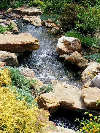 Tulsa Garden Center: Stream