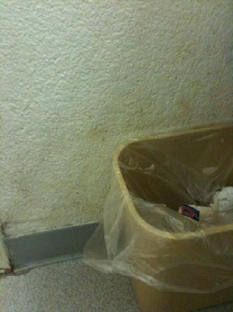 Motel 6 Lufkin: dirty walls