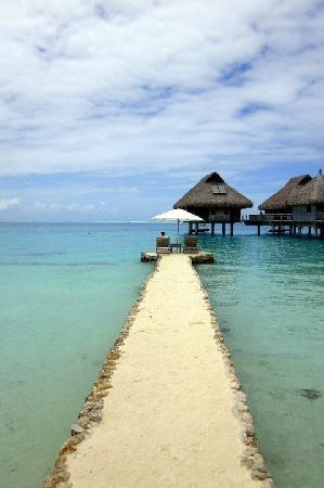 Conrad Bora Bora Nui: Perfect seat