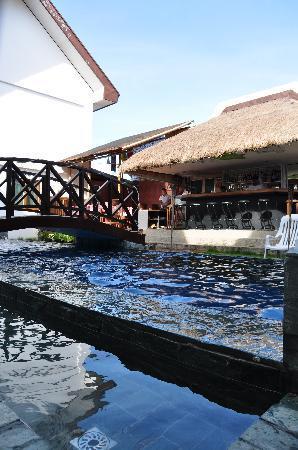 Nirvana Beach Resort: Pool & Bar.