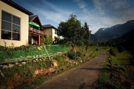 Seclude Palampur: Quiet four bedroom bungalow
