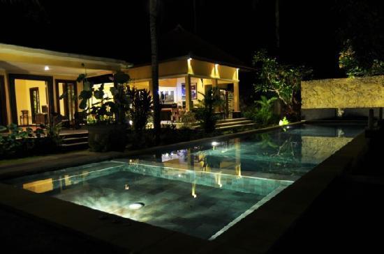 Bali au Naturel: Pool 2nd Villa at Night