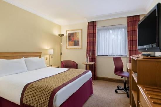 Hilton Warwick / Stratford-upon-Avon: Hilton Double Guest Room