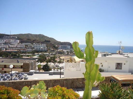 Apartamentos Sanfe: View from teh balcony