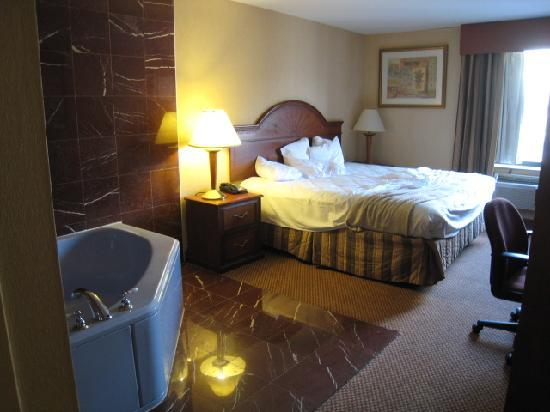 La Quinta Inn Queens New York City: 客室
