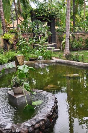 Bali au Naturel: Fish and Tortoise Pool