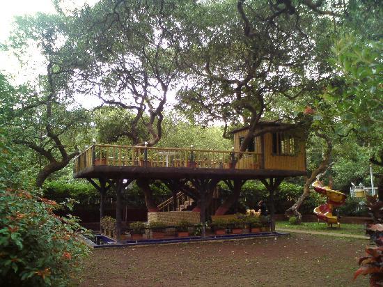 Saket Plaza: lawn