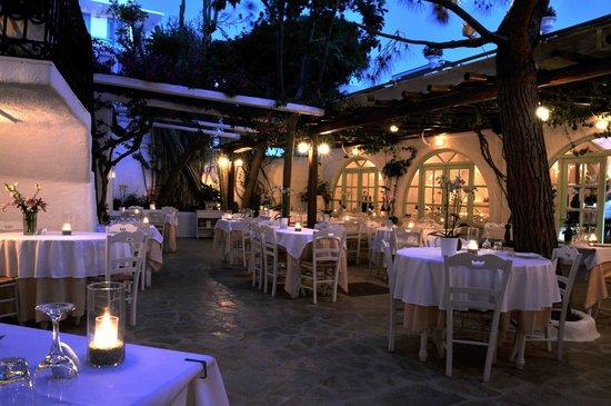 Avra Restaurant - Garden: The NEW Avra, 27 Kalogera str.