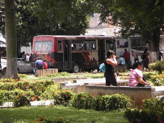 Porlamar, Venezuela: Busse, die am Plaza Bolivar abfahren