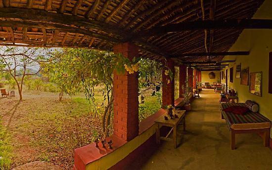 Bhoramdeo Jungle Retreat : The Veranda