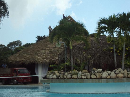 Las Canas : Bar piscine