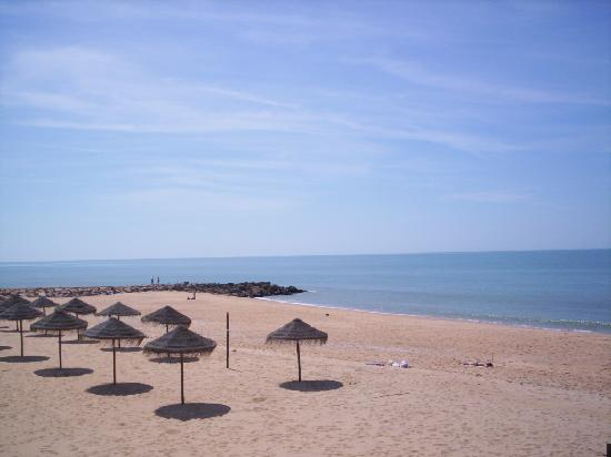 Apartments Alondras Park: Sun, Sea, Sand - what more do you need?