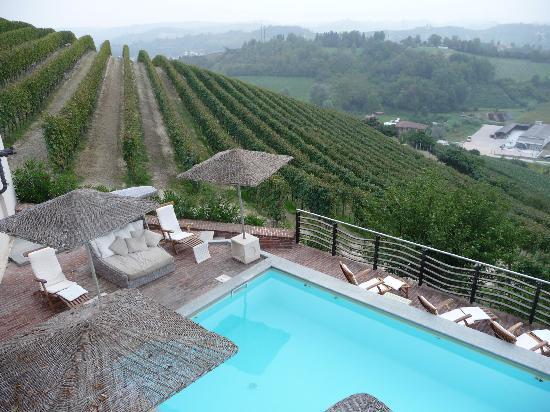 Canale, Ιταλία: la piscina e i vigneti