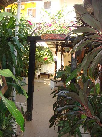 Pura Vida Hostel: entrance to the hostel