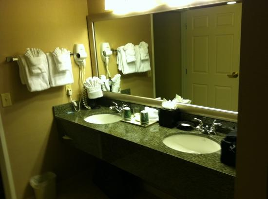 Wingate by Wyndham Greenwood Village/Denver Tech: Double granite vanity bathroom