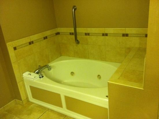 Wingate by Wyndham Greenwood Village/Denver Tech: Large roman jacuzzi jetted tub custom tile