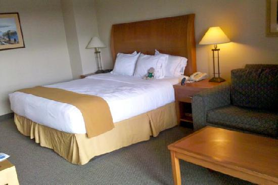 Holiday Inn Express Hotel & Suites Ventura Harbor: King Bed Harbor View room