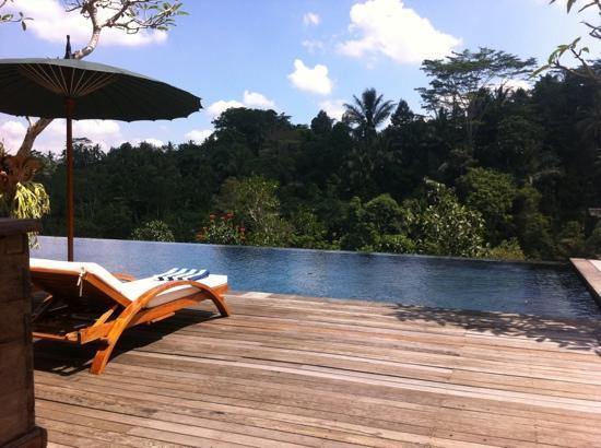 Alam Ubud Villa: alam ubud pool
