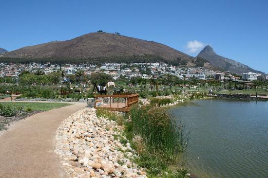 Green Point Park and Biodiversity Garden: Signal Hill in Background