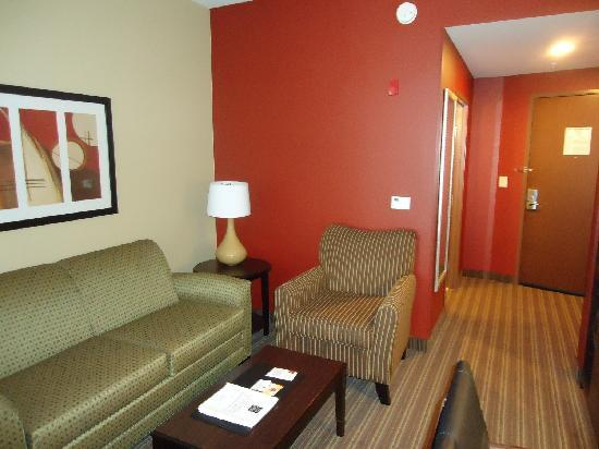 Comfort Suites West of the Ashley: Room