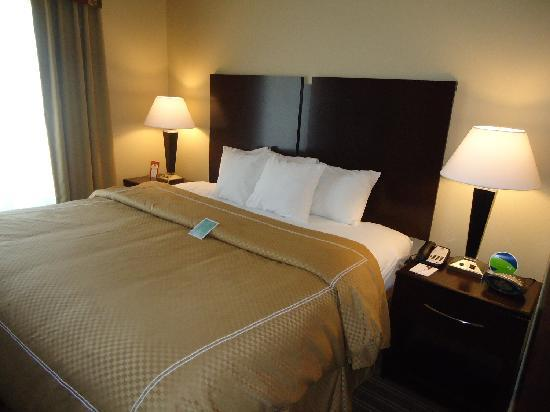 Comfort Suites West of the Ashley: Bed