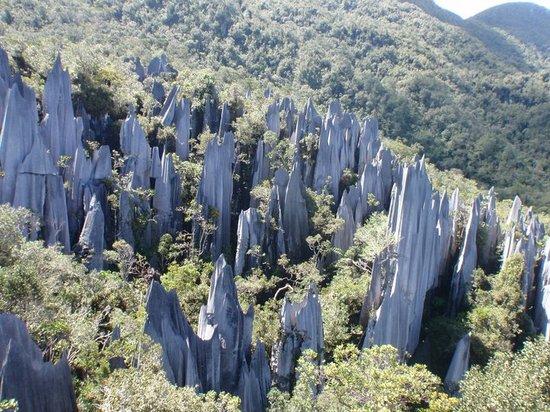 Miri District, Malasia: Pinnacles