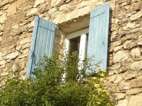 Maison d'hôtes La Guillone : Rosiers Banks en fleurs