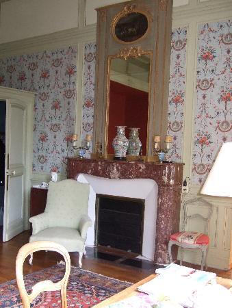Chateau De Verrieres: Kamin im Zimmer