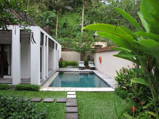 The Samaya Bali Ubud: outside pool