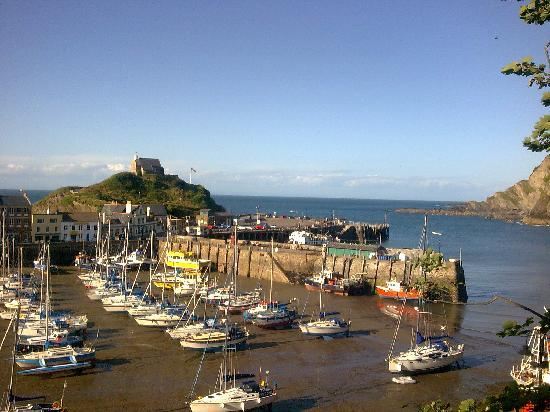 Ilfracombe, UK: Overlooking the lovely harbour