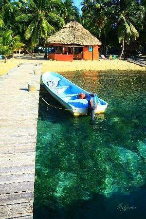 Tobacco Caye Lodge: Dock and bar