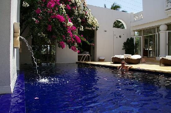 Hotel Casa Harb: The gorgeous pool