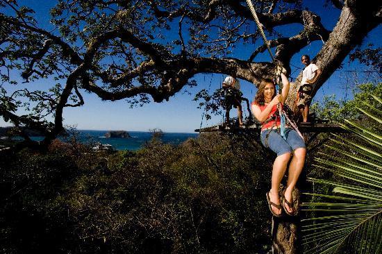 Samara Adventure Company: Canopy Tour