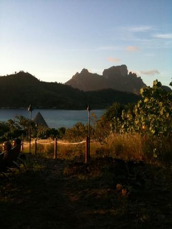 Sofitel Bora Bora Marara Beach Resort: View from the hill on the private island