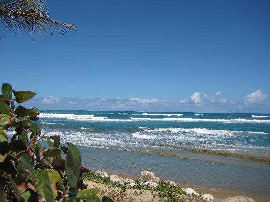 Casa Blanca Hotel & Surf Camp: Secluded swimming area just down the lane from the hotel