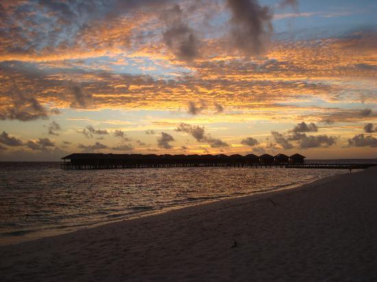 Filitheyo Island Resort: Coucher de soleil