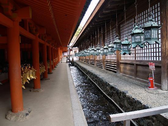 Nara Prefecture, Japan: Nara 8