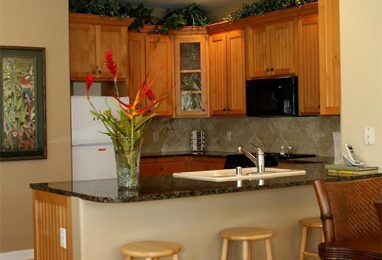 Regency Resorts Condominiums: Full Modern Kitchens