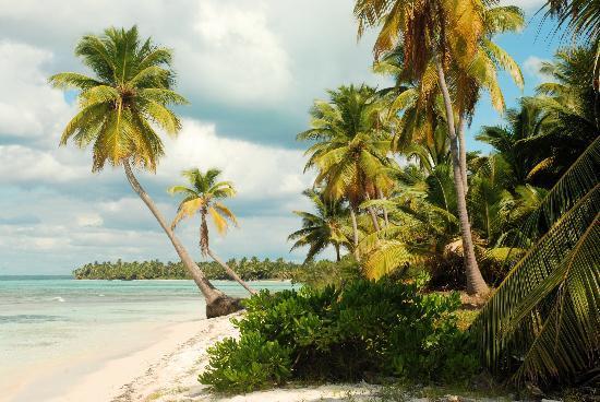 República Dominicana: Playa de Saona,una de sobre 2 kilometros  de la mejores playas de las Isla...