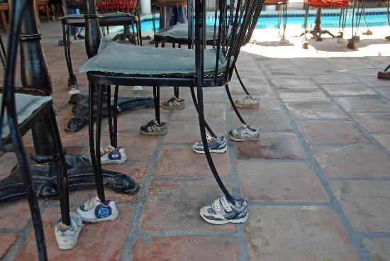 Bird Cage Restaurant : the chairs have shoes!