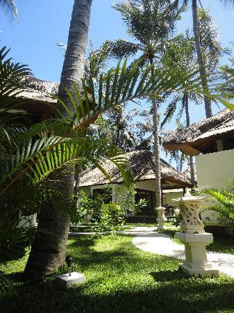 Palm Garden Amed Beach & Spa Resort : ein teil der anlage (losmen und villas)