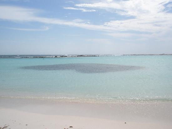 Baby Beach: Beautiful water