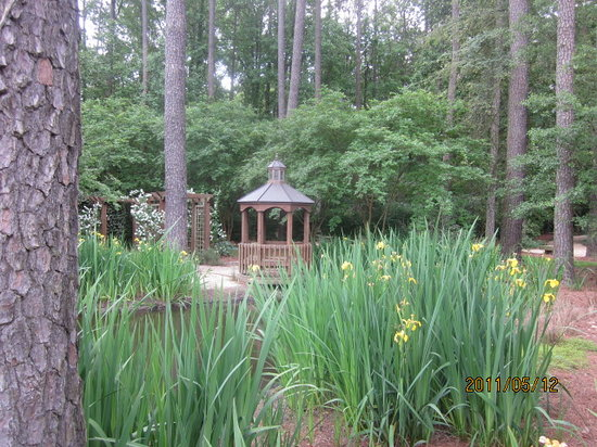 Cape Fear Botanical Garden Fayetteville 2020 All You Need To Know Before You Go With Photos Tripadvisor